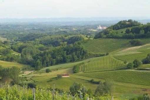 Domani ad Asti si inaugura il Festival del Paesaggio Agrario 2019