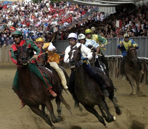 Doping al Palio di Asti del 2014, giudice assolve tutti i fantini e i proprietari degli animali imputati