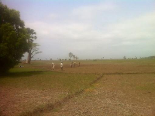 Casamance 2019
