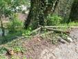 Staccionata rotta al parco Monte Rainero