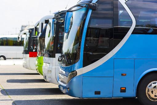 Serve subito un decreto urgente o molte aziende di trasporto turistico falliranno