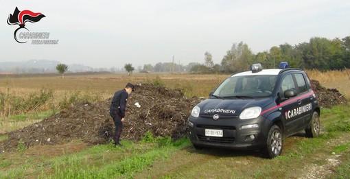 Immagini inerenti l'operazione dei Carabinieri Forestali