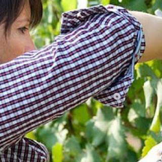 In arrivo dal governo sostegni per l'imprenditoria femminile in agricoltura