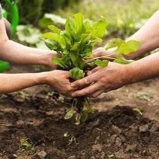 È ora di Comunità Sostenibile e Partecipazione