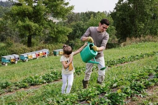 Nuovo regolamento regionale per le fattorie didattiche piemontesi