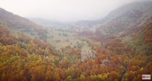 Un fermoimmagine tratto da uno dei video