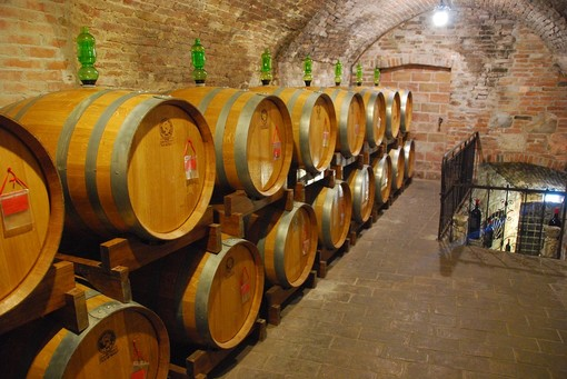 Una cantina vinicola