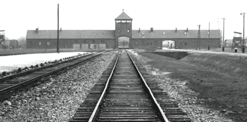 """""""IO SONO..."""" pensieri e racconti per non dimenticare l'Olocausto"""