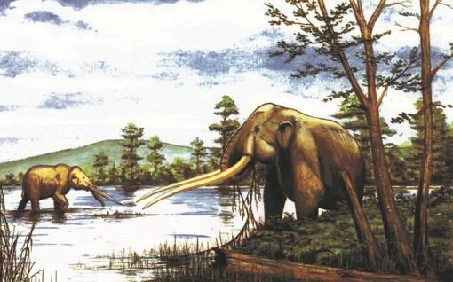 Mastodonte del Villafranchiano