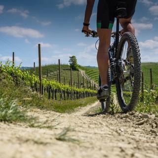 Bicicletta su sterrato