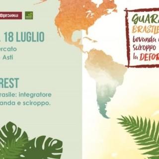 Il guaranà dei nativi brasiliani sarà disponibile alla Bottega Rava e Fava di via Cavour