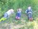 La scuola fuori dalla scuola: il Cpia di Asti ha presentato due Pon sviluppati tra Costigliole e Nizza Monferrato
