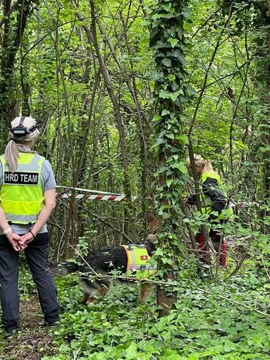 Caso Farinella: oggi trovati nuovi resti dello scheletro nei boschi dell'Astigiano