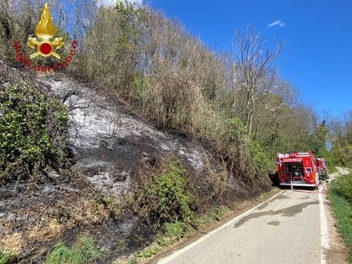 Sessant: a fuoco sterpaglie in un bosco. Coinvolti mille metri quadri di terreno