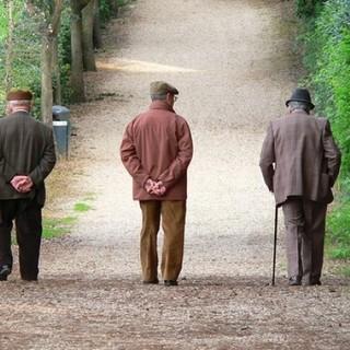 """Allarme di ANAP Confartigianato Piemonte (Associazione Nazionale Anziani e Pensionati): """"No ad ulteriori tagli delle pensioni"""""""