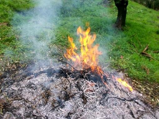 Domenica scatterà in tutto il Piemonte il divieto di bruciare materiale vegetale