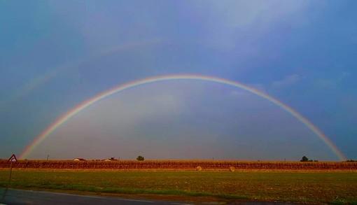 """Il colore dell'arcobaleno: la rubrica dei colori a cura della residenza per disabili """"Il Borgo"""""""