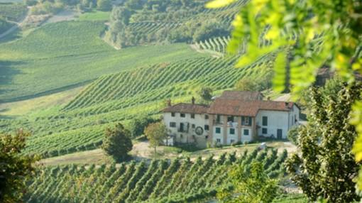Paesaggio vitivinicolo unesco, panorama