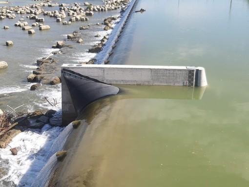 """Angela Quaglia (CambiAmo Asti) dopo un sopralluogo a Tanaro nei pressi della centrale idroelettrica: """"Troppo facile scendere e blocchi formano pericolose piattaforme"""""""