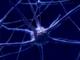 Cervello e computer collegati da un circuito neurale 3D