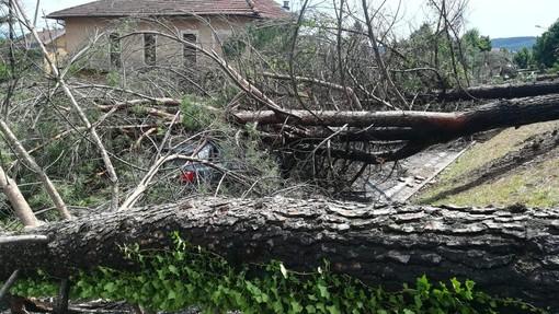 Danni da maltempo: la Regione Piemonte chiederà lo stato di calamità