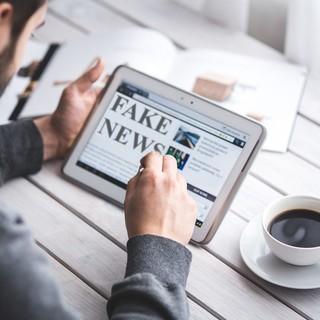 Ragazzo mentre legge una fake news