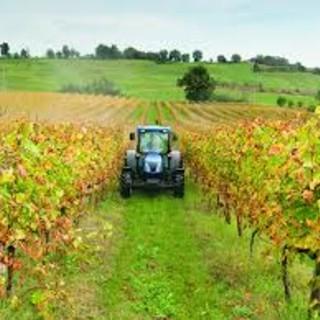 Dall'Inps indicazioni per gli adempimenti delle aziende agricole