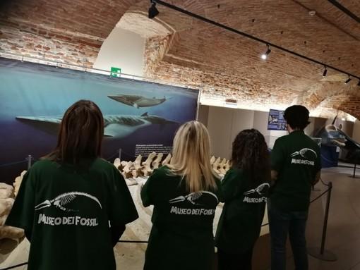 Servizio civile con il Parco Paleontologico Astigiano