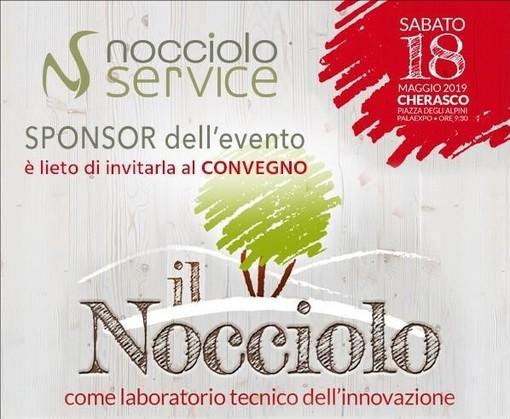 """Nocciolo Service: fornitura piante di nocciolo certificate e realizzazione noccioleti """"chiavi in mano"""""""
