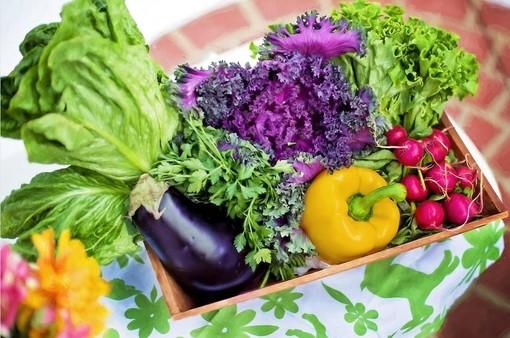 Con il Riparti Piemonte sostegno al settore agroalimentare e biologico