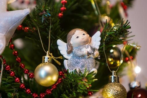 Presepi e alberi di Natale nelle scuole: le reazioni dell'ambiente scolastico astigiano