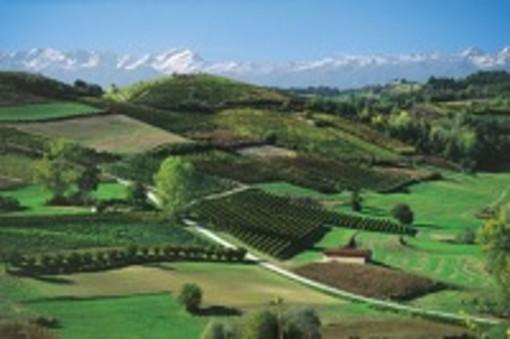 Le collinie vinicole patrimonio Unesco