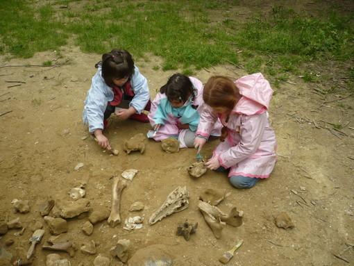 Ripartono le giornate dedicate alle famiglie organizzate dal Parco Paleontologico di Asti