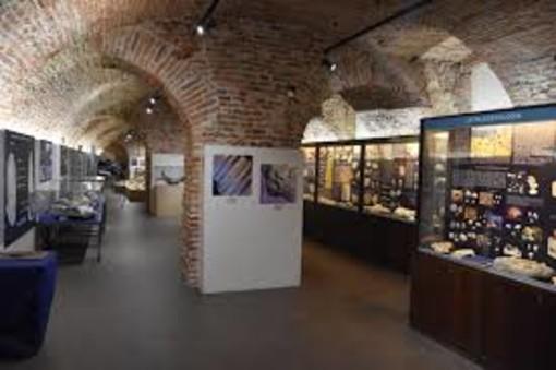 Museo Paleontologico di Asti