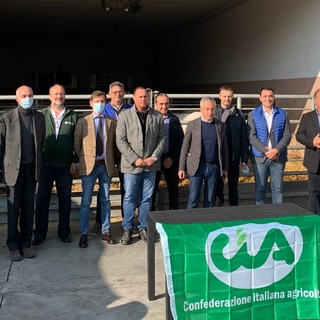 """Cia a difesa della Razza Piemontese: """"Urgente riequilibrare la catena dei prezzi a favore degli allevatori"""""""
