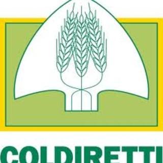 Coldiretti Asti chiede uno strumento agile e semplificato per i voucher in agricoltura