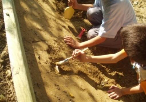 Fossili e nocciole con il museo Paleontologico, domenica 20 settembre