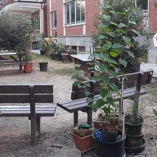 """Scuola, Nizza Monferrato è pronta: """"Non dobbiamo avere paura del contagio"""""""