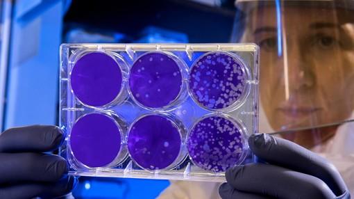 Coronavirus e misure di contenimento: la Regione fa chiarezza. Sì ai mercati e alle esequie, no alle manifestazioni che prevedono pubblico [VIDEO]