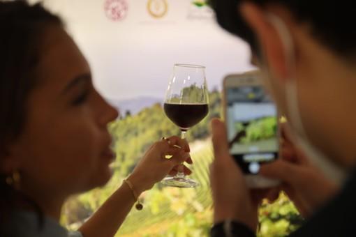 Il comparto vinicolo nel Monferrato raggiunge il dato migliore degli ultimi quattro anni